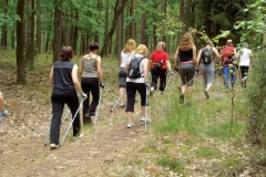 Routes - Nordic Walking
